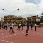 basket 2806163