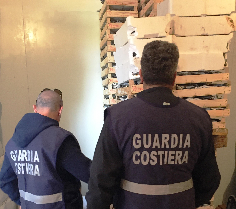 Sequestrato 6000 Kg di prodotto ittico a Marsala