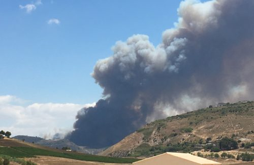 Scout trapanesi evacuati da incendio bosco Angibè di Calatafimi