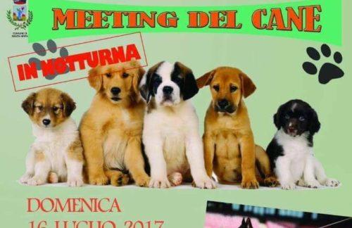Santa Ninfa: Domenica il meeting del cane