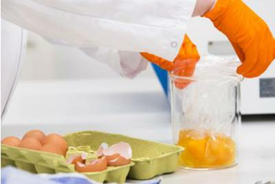 [SANITA'] In arrivo bollino 'fipronil free' sulle uova italiane