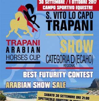 San Vito lo Capo. Torna il «Trapani Arabian Horses Cup», lo show dei cavalli di razza araba