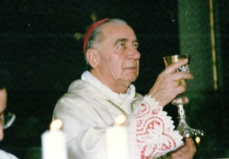 Prete dei terremotati e vescovo anticlan, morto Riboldi